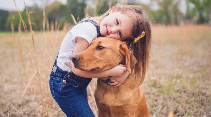 Girl In Blue Overalls Cuddling Brown Dog In Field