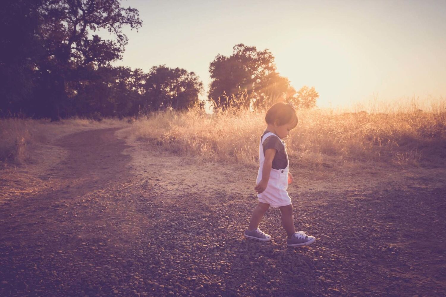 Young Child Walking Through Country Side During Sunset