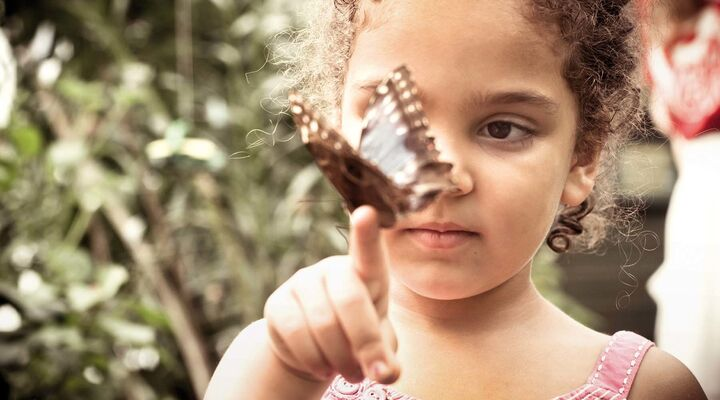 Girl With Butterfly Sitting On Her Finger