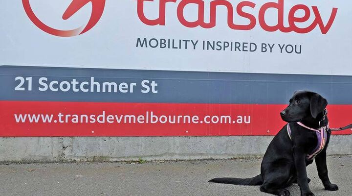 Justice Standing In Front Of Transdev Billboard