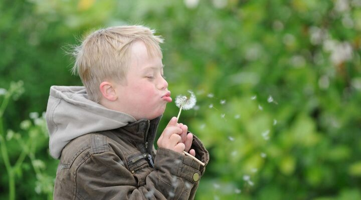 Boy With Down Syndrome Blowing A Dandelion